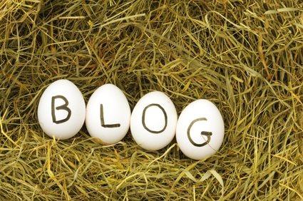combien peut gagner un blogueur pro